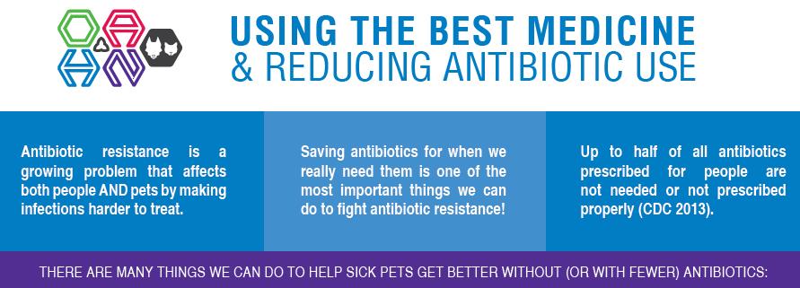 Infographic: Using the Best Medicine & Reducing Antibiotic Use