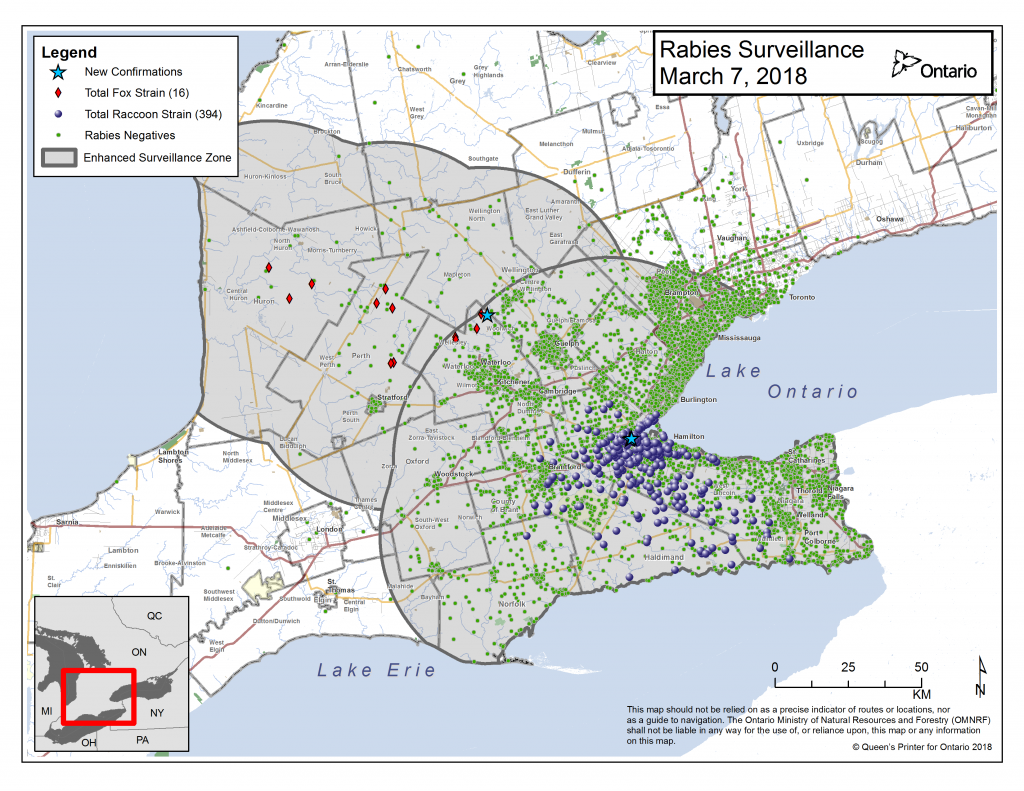 Ontario Rabies Update for March 7 – 3 New Cases