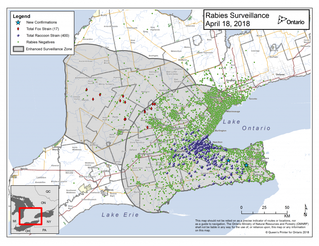 Ontario Rabies Update for April 18 – 2 New Cases