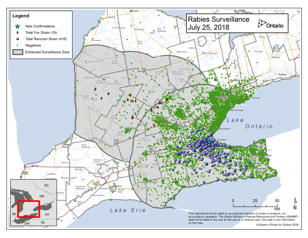 Ontario Rabies Map - July 25 update