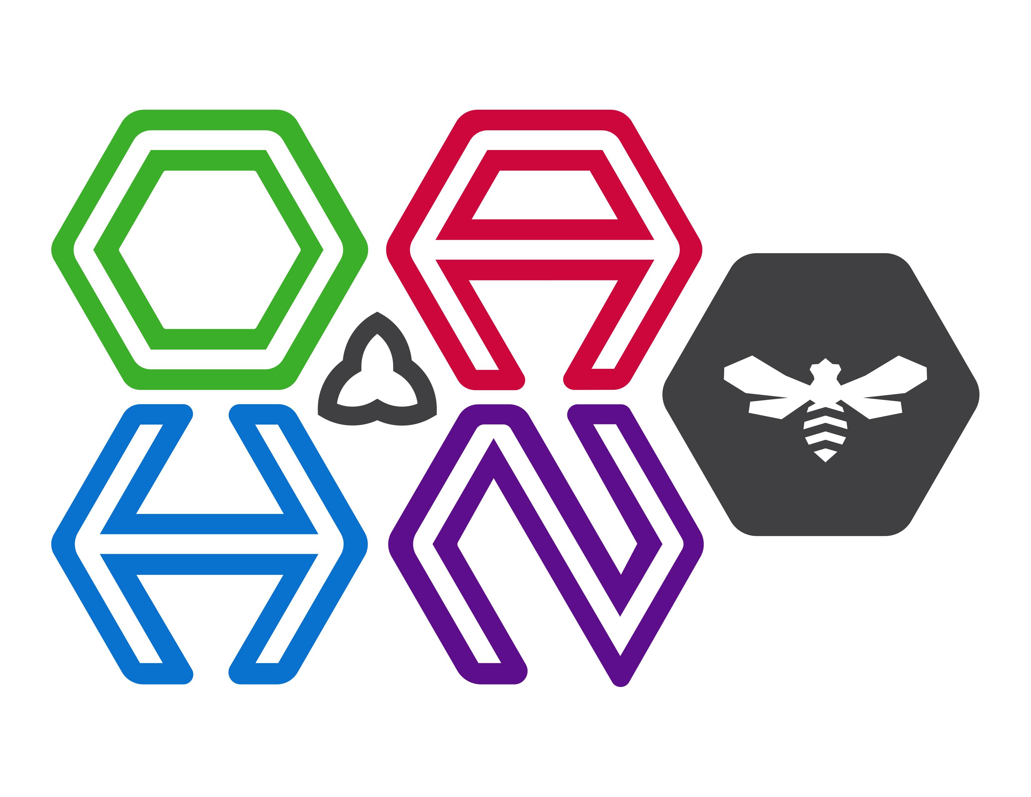 OAHN Bee Logo