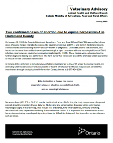 Two confirmed cases of abortion due to equine herpesvirus – 1 in Haldimand County, Ontario