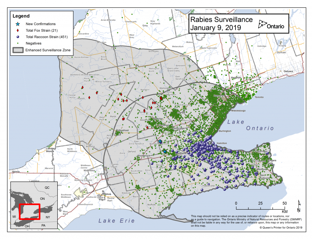 Ontario Rabies Update for January 9 – 2 New Cases