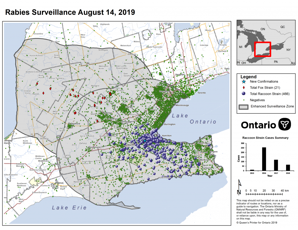 Ontario Rabies Update for August 14 – 2 New Cases