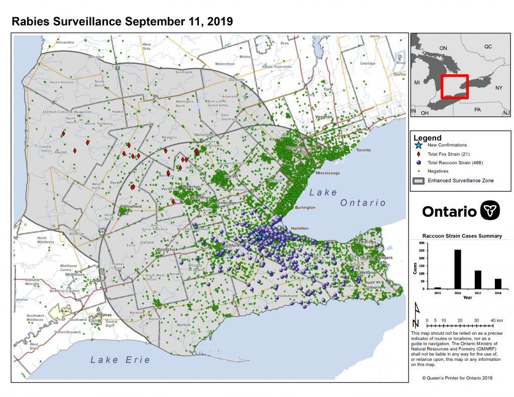 Ontario Rabies Update for September 11 – 1 New Case