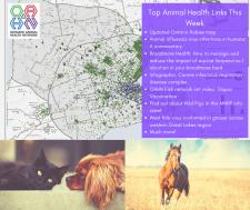 Top Animal Health Links (Nov 4 – 10)