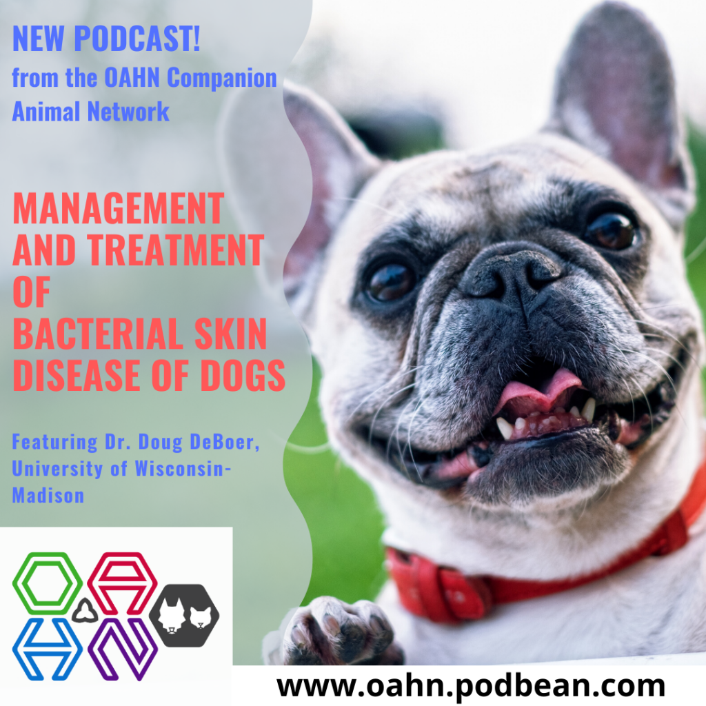 NEW OAHN Companion Animal Podcast: Management and Treatment of Canine Bacterial Dermatologic Disease