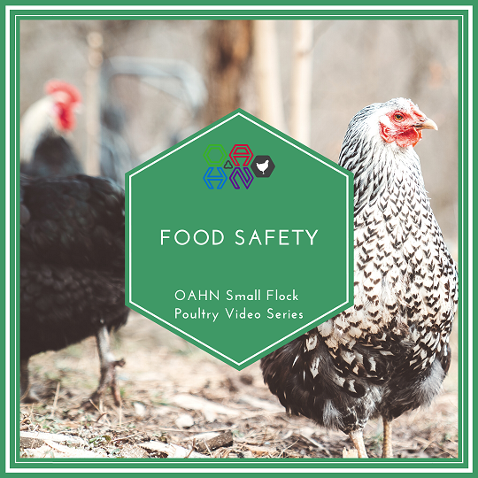 Food Safety for Flock Owners