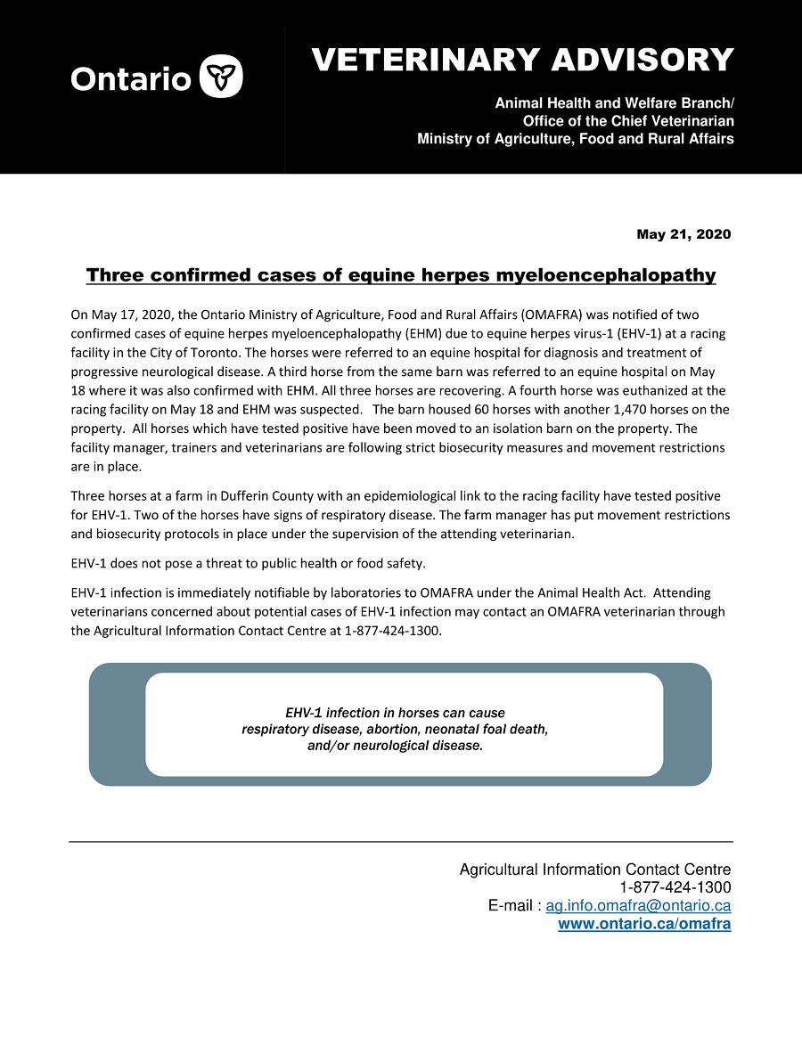 Veterinary Advisory – Three confirmed cases of equine herpes myeloencephalopathy